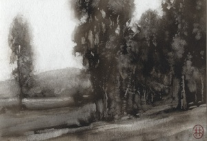 Eucalyptus by the Lake_4x6