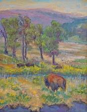 Buffalo on the range in Yellowstone NP